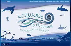 Free Entrance to Cala Gonone's Acquarium!